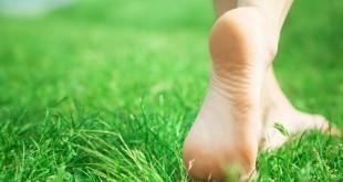 Прогулка по траве полезна для стопы