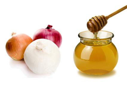 Мед и лук известны своими лечебными свойствами