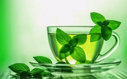 Монастырский чай, применяется при остеоартрозе