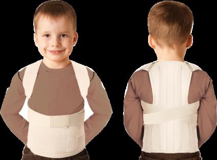 У детей с помощью грудо - поясничного корсета исправляют сколиоз