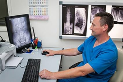 Противопоказания к рентгенографии поясницы