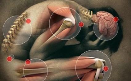 Патология может поразить любой сустав в организме человека