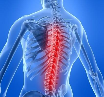 Первый болевой синдром в районе позвоночника – это главный «звоночек» к посещению врача