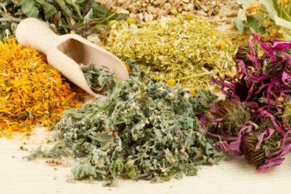 Монастырский чай от подагры принимают в комплексном лечении