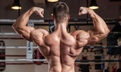 Накачивать шею будет невозможно без участия других групп мышц спины, плеч, рук