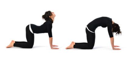Девушкам полезны базовые упражнения, которые разработал доктор Бубновский