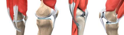 Бывают бытовые, спортивные и профессиональные травмы