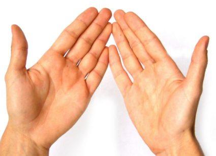 Развитие подагрического артрита провоцирует подагра