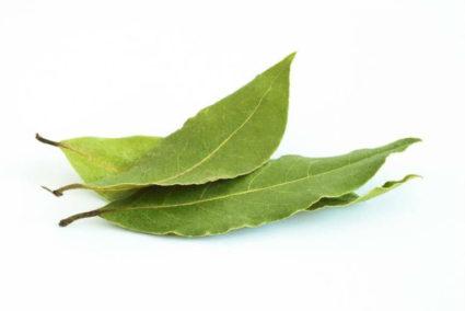 Лавровый лист помогает от солей в суставах