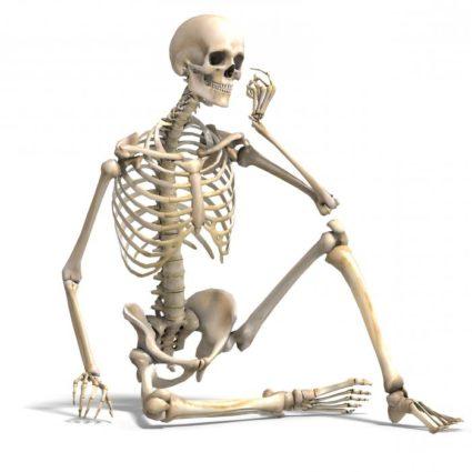 Скелет человека требует задуматься