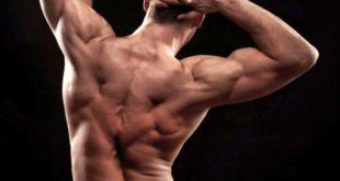 Накачанные мышцы спины - это красиво