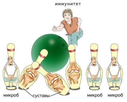 Крепкий иммунитет - это главный помошник