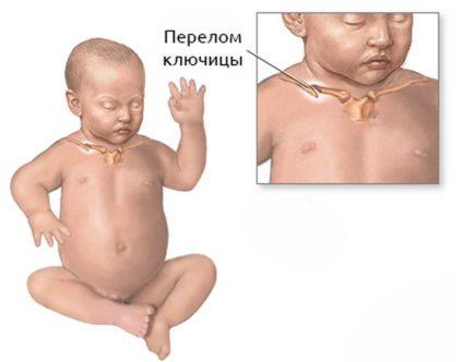 Малыши рождаются беззащитными