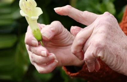 Секреты наших бабушек