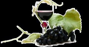 Большое количество полезных веществ содержит виноград